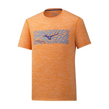 Produkt Mizuno Impulse Core Wild Bird Tee J2GA900553