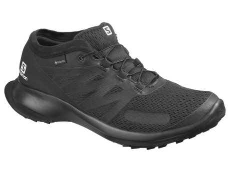 Salomon Sense Flow GTX 409674