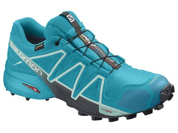 Produkt Salomon Speedcross 4 GTX W 406606
